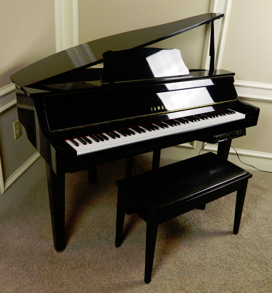 The gallery for yamaha black grand piano Size of baby grand piano